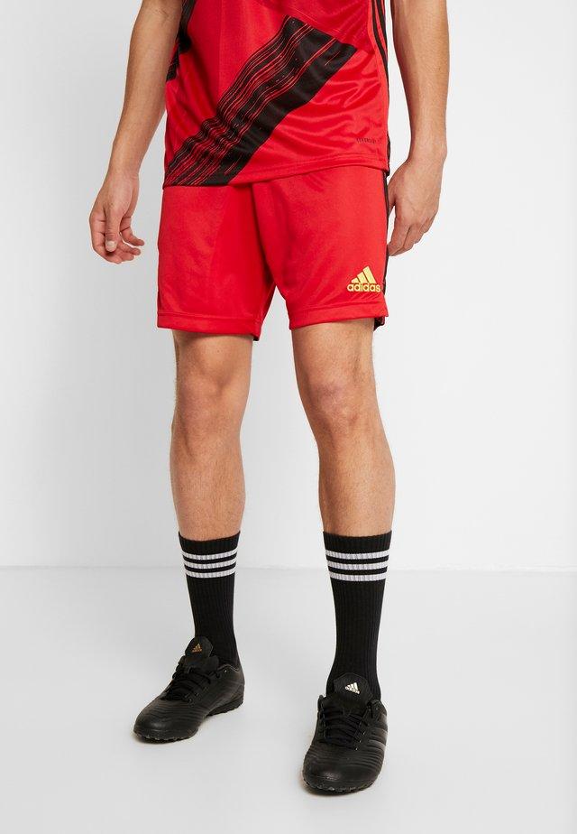 BELGIUM RBFA HOME SHORTS - Short de sport - red