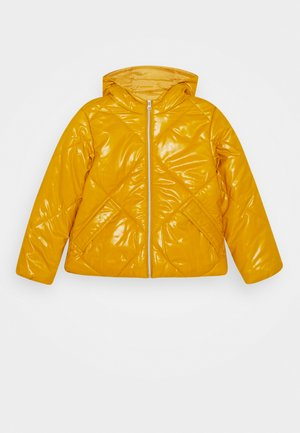 BASIC GIRL - Chaqueta de invierno - yellow