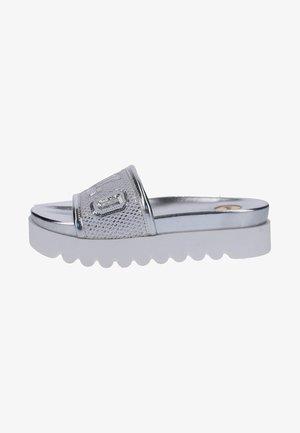 Pool slides - silver