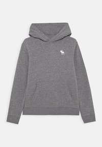 Abercrombie & Fitch - ICON - Hoodie - grey - 0