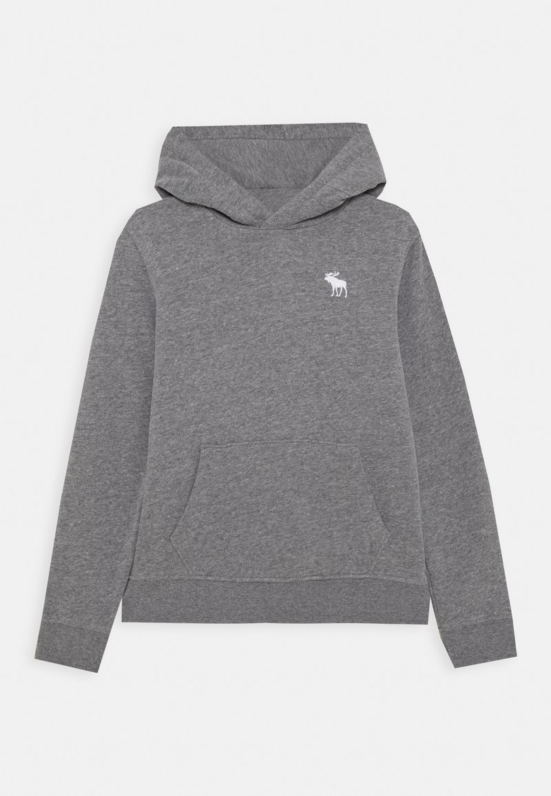 Abercrombie & Fitch - ICON - Hoodie - grey