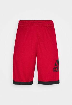 Sports shorts - scarlet