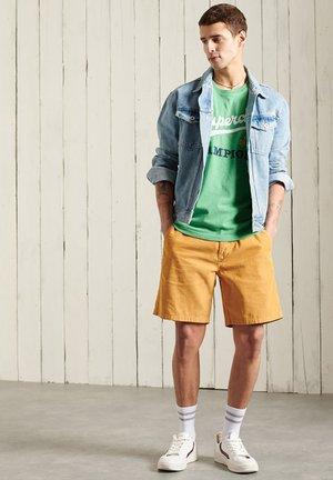 VINTAGE VARSITY - Print T-shirt - bright cirrus green grit