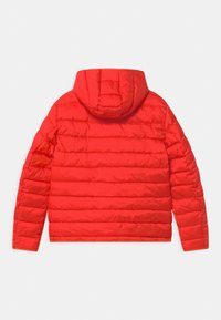 Blauer - GIUBBINI CORTI IMBOTTITO OVATTA - Zimní bunda - orange - 1