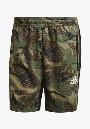 Pantaloncini sportivi - green