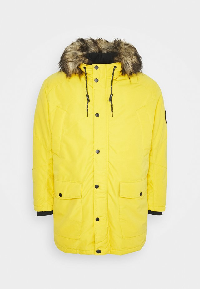 JJSKY JACKET - Winter coat - spicy mustard