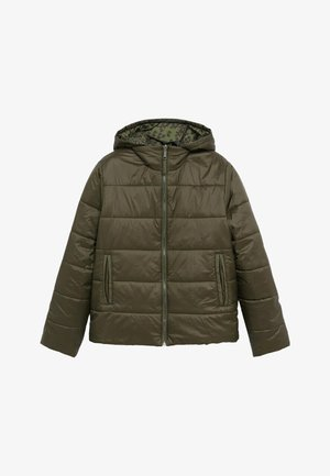 CLOUDI - Winter jacket - dunkelgrün
