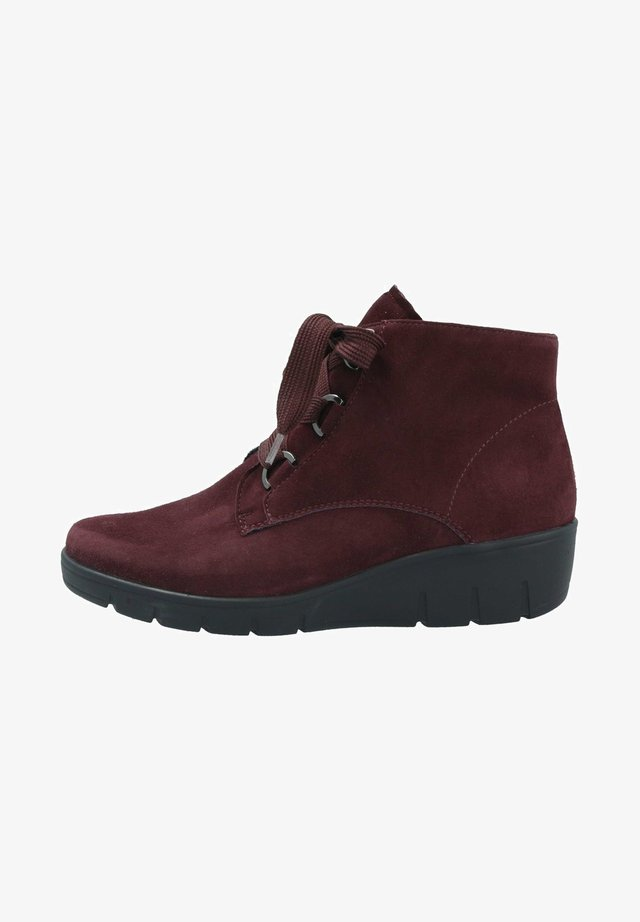 Lace-up ankle boots - cassis