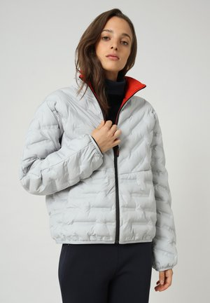 A-ALVAR - Winter jacket - grey harbor