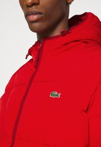 Lacoste - Down jacket - red - 4