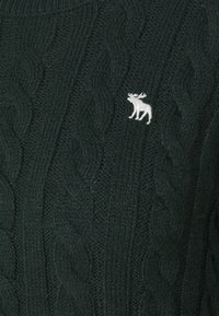 Abercrombie & Fitch - CABLE ICON MOOSE CREW - Jumper - dark green - 2