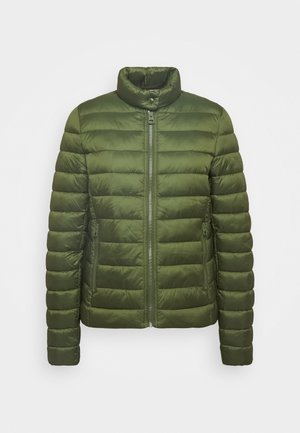 JACKET REGULAR LENGTH WITH STAND UP COLLAR  - Winter jacket - lush pine