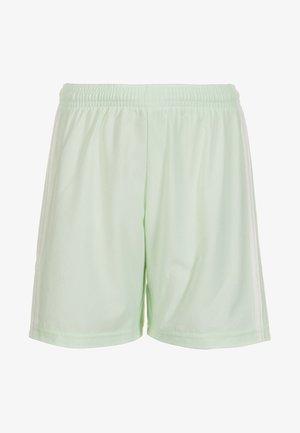 CONDIVO 18 - Sports shorts - light green