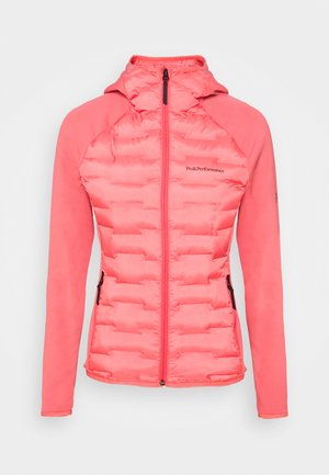 ARGON HYBRID HOOD - Outdoor jacket - alpine flower