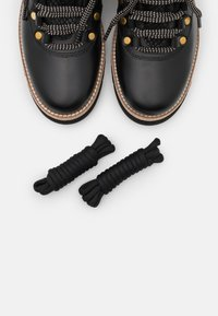 Cole Haan - ZEROGRAND EXPLORE HIKER WP - Lace-up ankle boots - black/grey - 5