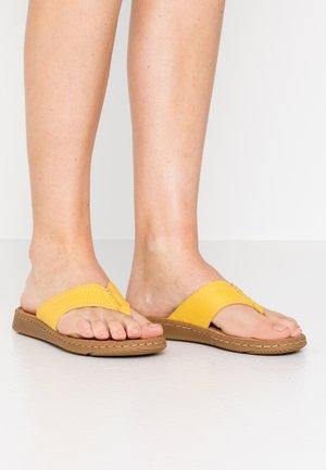 SLIDES - Sandály s odděleným palcem - sun