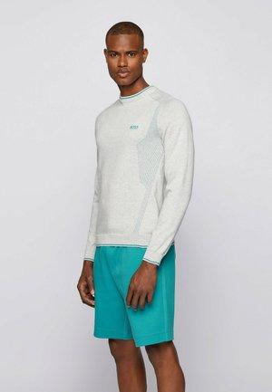 ROVAN - Sweater - light grey