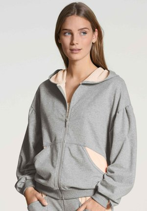 Zip-up sweatshirt - delphin grey mele