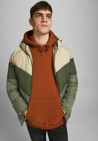 Jack & Jones - Winter jacket - chinchilla - 3