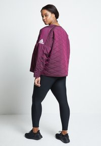 adidas Performance - PADDED - Sports jacket - berry - 3
