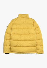 Petrol Industries - Winter jacket - sulphur - 2