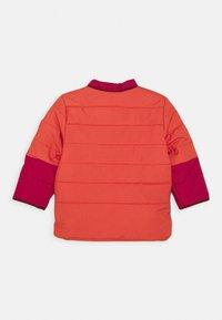 Finkid - KOIRA HUSKY - Winter jacket - persian red/cabernet - 2