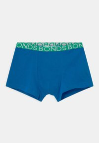 Bonds - 3 PACK - Panty - multi-coloured/grey - 2