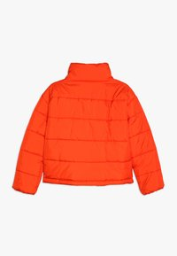 Hummel - NORTH - Winter jacket - tangerine tango - 1