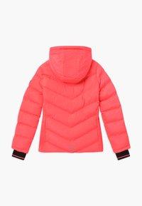 Cars Jeans - LURDES - Winter jacket - fluor coral - 1