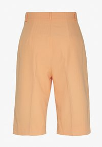 Envii - ENRETNA - Shorts - salmon buff - 1