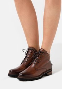 Everybody - NELLY - Botines con cordones - gianduia - 0