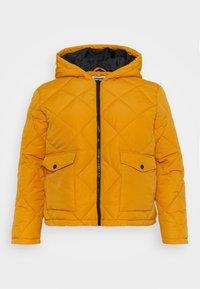 NMFALCON JACKET - Light jacket - inca gold/black