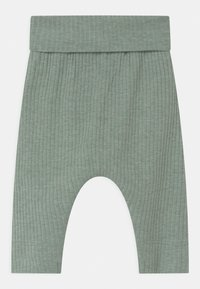 Name it - NBMFRODDE 2 PACK - Leggings - Trousers - desert palm/iceberg green - 1