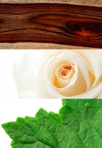DAVIDOFF Fragrances - ZINO DEODORANT STICK - Deodorant - - - 1