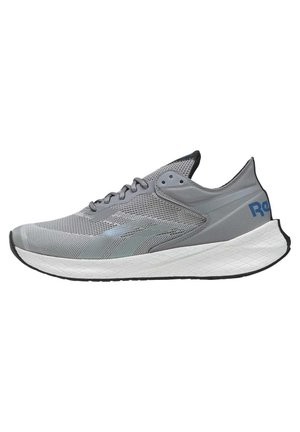 FLOATRIDE ENERGY SYMMETROS SHOES - Stabilty running shoes - grey