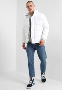 Schott - NEBRASKA - Winter jacket - white - 1