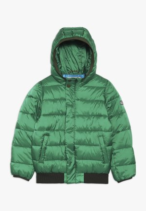 PADDED JACKET WITH HOOD - Winter jacket - boxing green