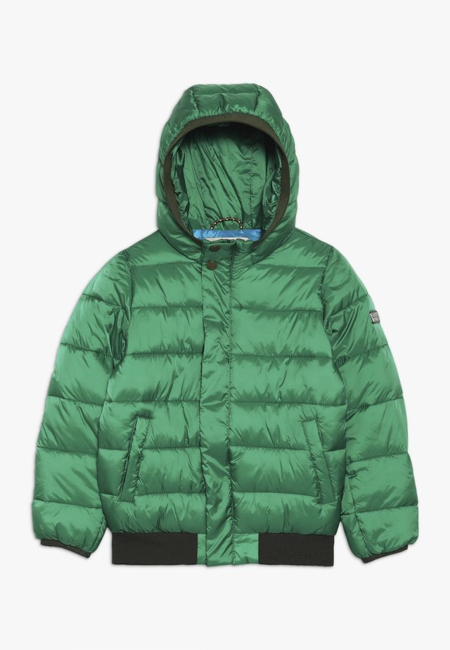 PADDED JACKET WITH HOOD - Chaqueta de invierno - boxing green