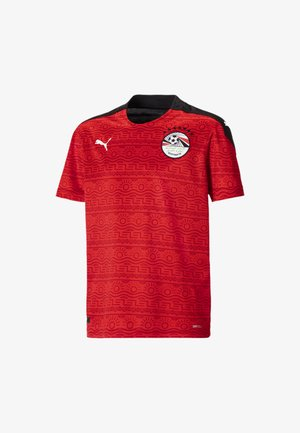 HOME YOUTH - Nationalmannschaft - puma red-puma white