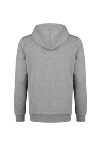 Puma - TEAMGOAL 23 CASUALS HOODIE HERREN - Hoodie - medium grey heather - 1