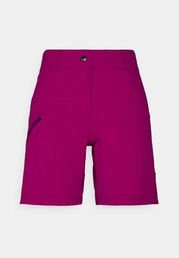 CYCLE RUNNING WOMEN - Pantaloncini sportivi - beet red