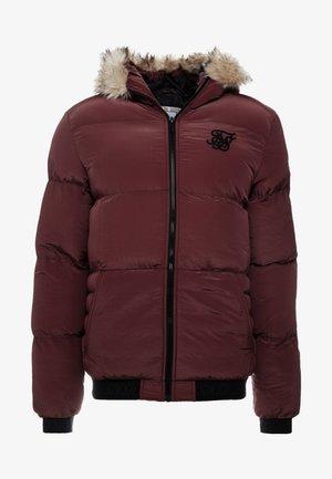 DISTANCE JACKET - Winter jacket - burgundy