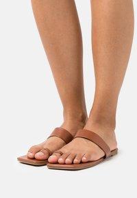 RAID - HYLTON - T-bar sandals - brown - 0
