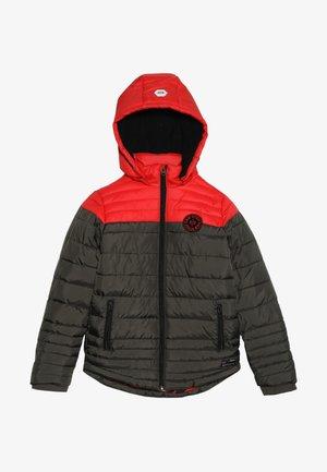 GEORGE - Winter jacket - dark army