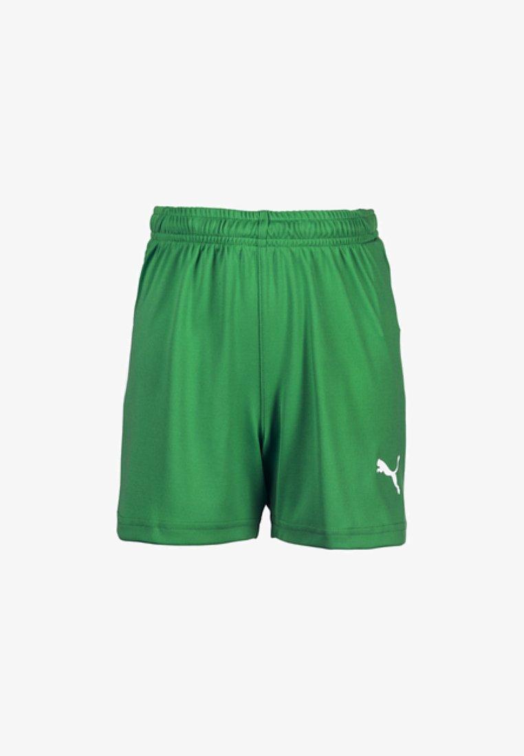 Puma - LIGA - Sports shorts - bright green