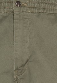 Polo Ralph Lauren - FLAT PANT - Chinos - expedition olive - 2