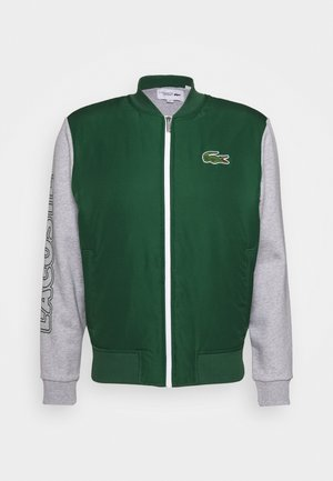 BOMBER JACKET - Veste de survêtement - green/silver