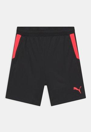 INDIVIDUAL CUP JR UNISEX - Sports shorts - puma black/sunblaze