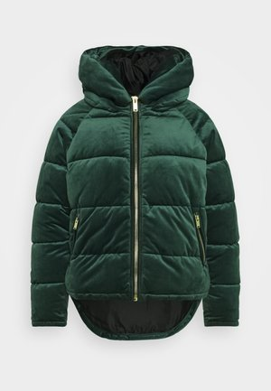 ONLNEW PAULA - Winter jacket - pine grove