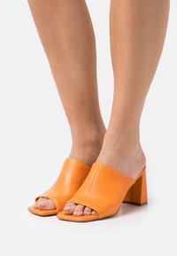 Steve Madden - LIZO - Heeled mules - orange - 0